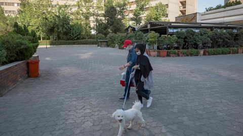 Ein Mann und eine Frau führen einen kleinen weißen Hund im Schatten von Wohn-Hochäusern spazieren