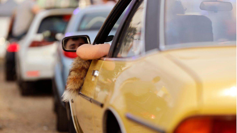 Ein Manta mit Fuchsschwanz und Ellenbogen aus dem Fenster im Autokino