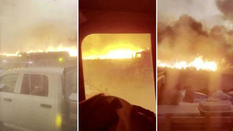 """Bei Lübtheen: Waldbrand in Mecklenburg-Vorpommern eingekesselt: """"Wir haben das Feuer jetzt im Griff"""""""