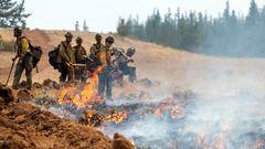 Ein Waldbrandteam schaut zu, nachdem es eine Feuerlinie gesetzt hat