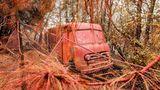 Feuerschutzmittel umhüllt ein Fahrzeug