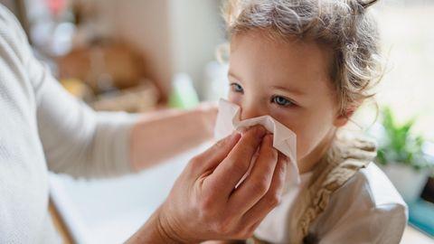 Infekte Kita Kinder: Ein Mädchen hat Schnupfen