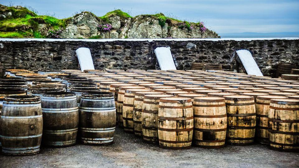 Das Klima ist ein Faktor bei der Whisky-Reifung