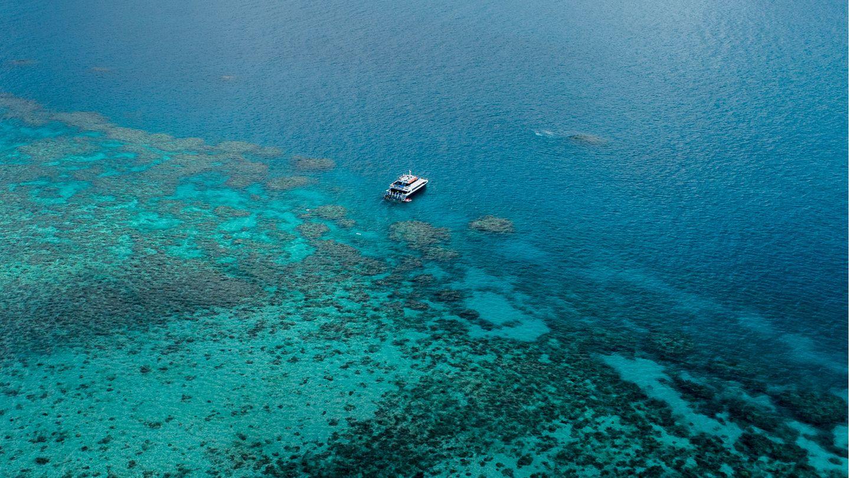 Great Barrier Reef in Queensland, Australien.