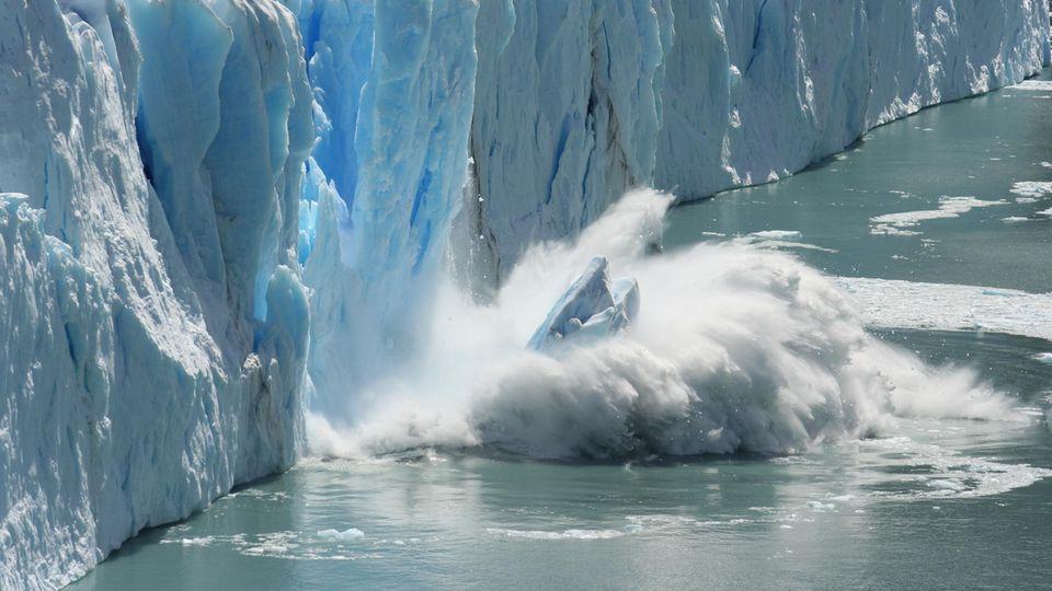 """""""Das Eis schmilzt immer schneller"""": Peter C. Ward warnt davor, den Meeresspiegelanstieg zu unterschätzen"""