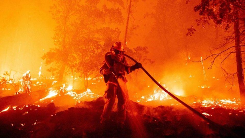 Feuerwehrmann kämpft gegen Waldbrand