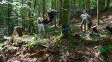 Abenteuer und Erholung in der freien Natur: Tim hangelt sich an einer Seilbrücke über einen Bach.