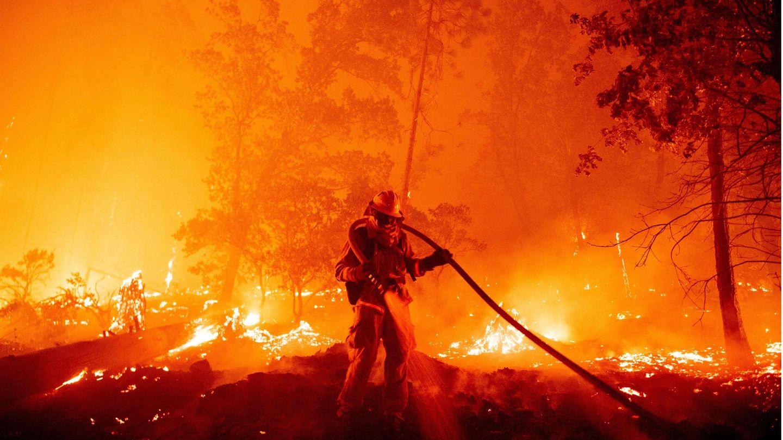 Ein Wald steht in Flammen, davor steht ein Feuerwehrmann in Schutzkleidung