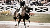 Bei der Frau auf dem Pferd handelt es sich um keine Geringere als Prinzessin Anne, die Tochter der britischen Königin. Als erstes Mitglied der Königsfamilie nahm sie 1976 an den Olympischen Spielenin Montreal teil. Fürs Treppchen reichte es aber nicht: Im Team der Vielseitigkeitsreiter wurde sie Neunte, in der Einzelwertung reichte es nur für Rang 24.