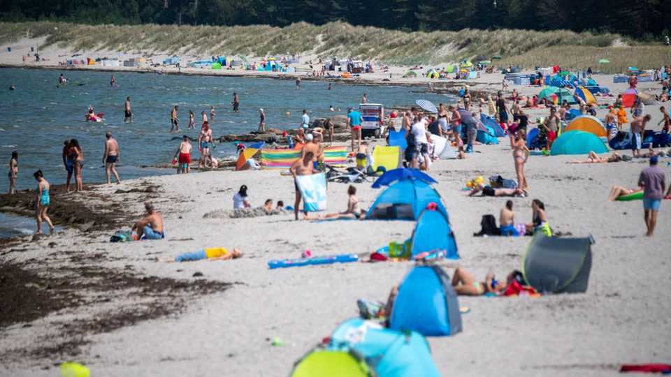 Badende und Strandmuscheln an einem sommerlichen Strand