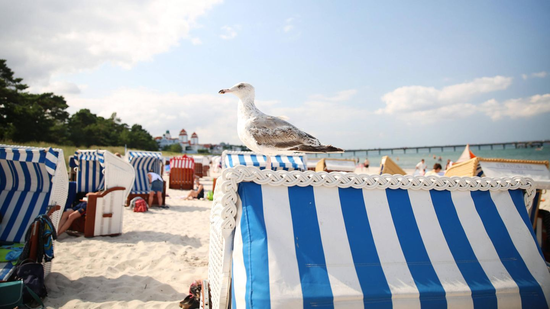 Am Strand im Ostseebad Binz im Landkreis Vorpommern auf der Insel Rügen.