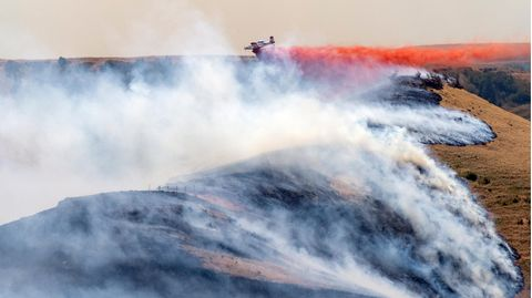 USA, Clarkston: Ein Flugzeug wirftFeuerschutzmittel auf das westliche Ende des Asotin Complex Fire ab