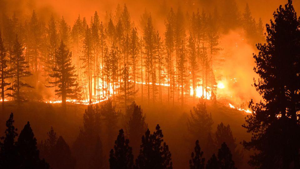 Waldbrände im Juli in Kalifornien