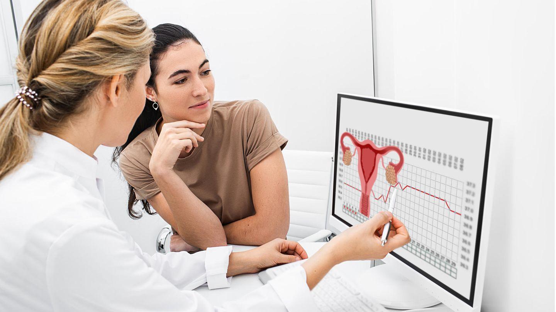 Frauenärztin und junge Frau sitzen vor einem Monitor mit der Abbildung der weiblichen genitalen Anatomie