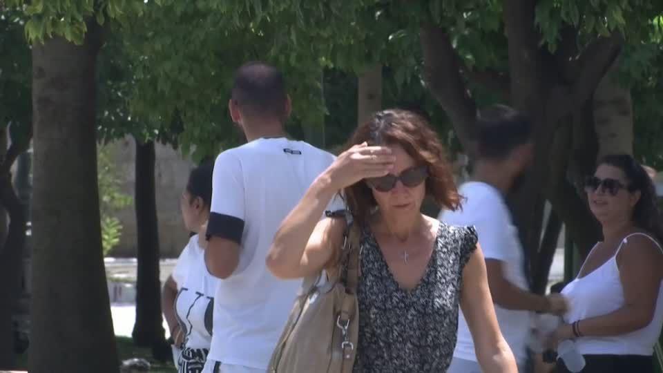 News vom Wochenende: Frau stirbt bei Kollision mit Mast und versursacht Stromausfall in zwei Landkreisen