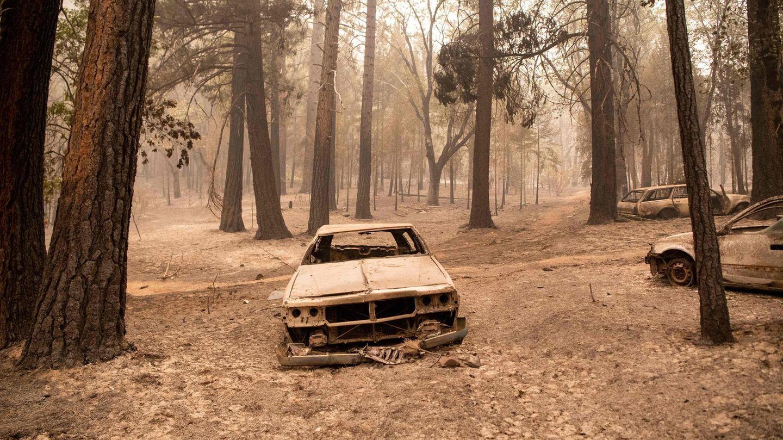 Verheerende Zerstörungen durch Waldbrände im Norden Kaliforniens