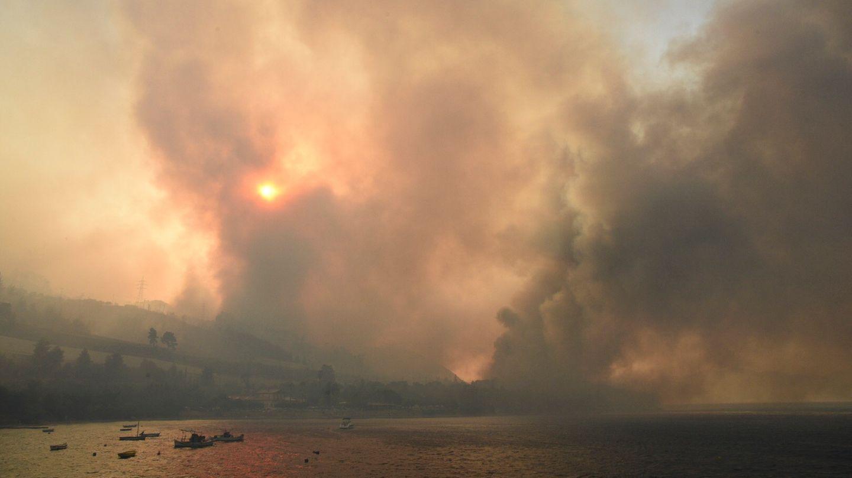 Auch in Griechenland brennen aufgrund großer Hitze die Wälder.