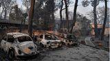 Waldbrand im Norden Athens