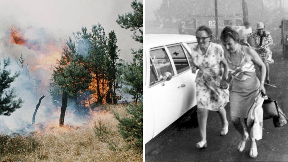 Gut eine Woche lang hatten im August 1975 in der Lüneburger Heide die Flammen gewütet