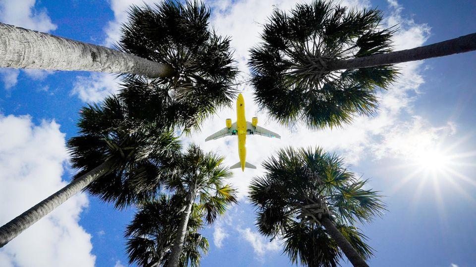 Ein Passagierflugzeug landet am Flughafen Tampa im US-BundesstaatFlorida