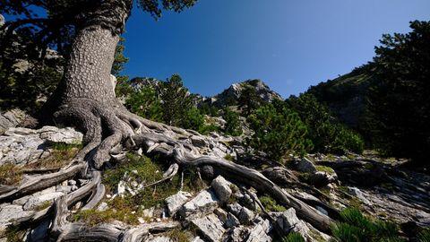 Qafa e Pejës, Gebirgspass im nördlichen Albanien