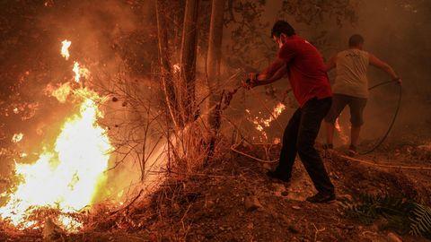 Griechenland, Evia Island: Freiwillige Helfer schlange mit Zweigen auf die Flammen eines Waldbrandes ein