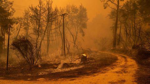 Hitze treibt extreme Brände wie auf Euböa