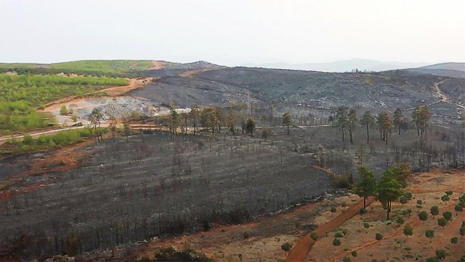 Drohnen-Videos zeigen das verheerende Ausmaß der Waldbrände in Türkei