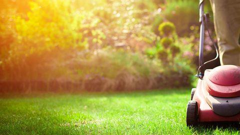 Rasen kalken: Rasenmäher steht in einem Garten auf der Wiese