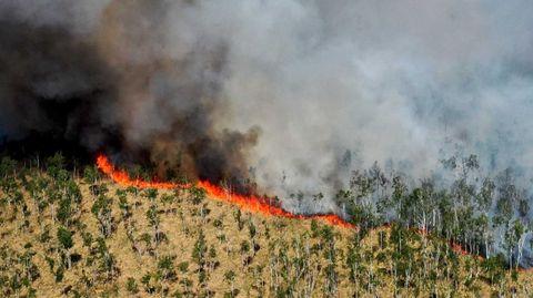 Blick auf die dunkle Rauchwolke eines Waldbrandes im Loben-Moor in Brandenburg im vergangenen Jahr