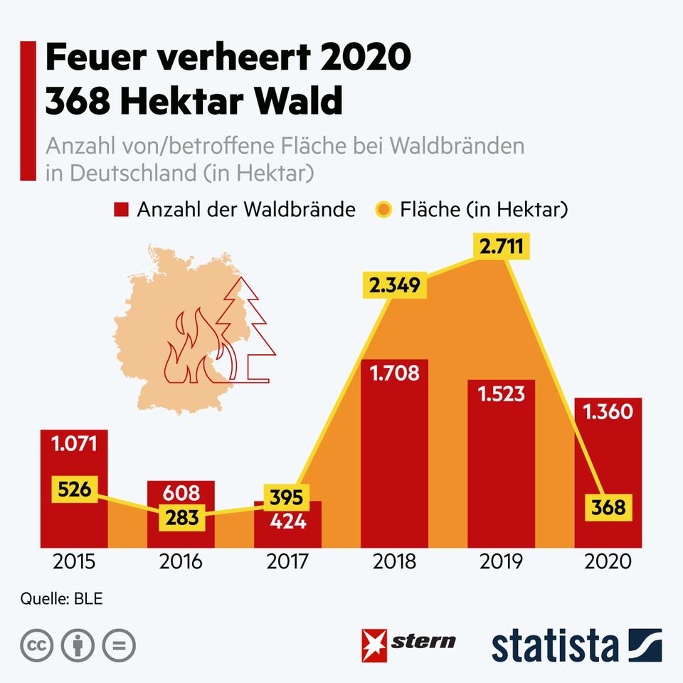 Steigende Temperaturen: Auch in Deutschland steigt das Waldbrand-Risiko