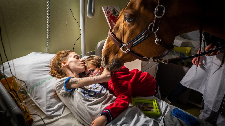 Den zweiten Platz belegte der französische Fotograf Jeremy Lempin mit dem Bild der krebskranken Marion, ihrem siebenjährigen Sohn und dem Therapiepferd Peyo. Tiere können Stress und Ängste reduzieren und das körperliche Wohlbefinden verbessern. Deshalb werden sie unter anderem in der Palliativmedizin eingesetzt.