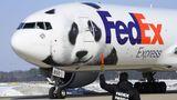 Pandabär auf Federal Express Flugzeug
