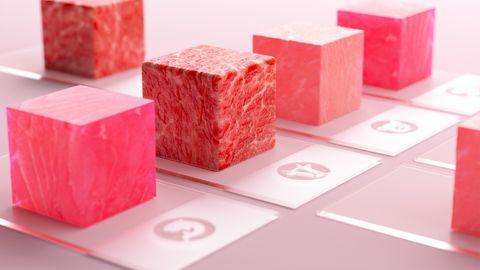 Verschiedene Arten von Fleisch aus dem Labor des deutschen Unternehmen Merck.