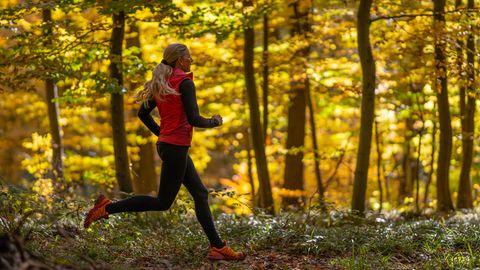 Jogging-Outfit im Herbst: Läuferin joggt im Spätsommer durch einen Wald
