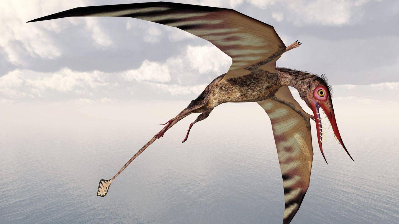 Illustration eines Flugsauriers