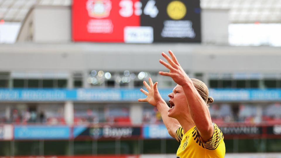 Erling Haaland bei Bayer Leverkusen gegen Borussia Dortmund