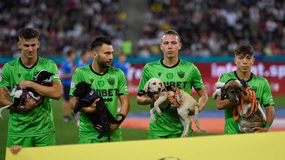Vier Fußballspieler von Dynamo Bukarest vor dem Spiel mit ihren Hunden aus dem Tierheim und von der Straße.