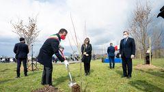 Premierminister Mario Draghi bei der Pflanzung des Gedenkwaldes in Bergamo
