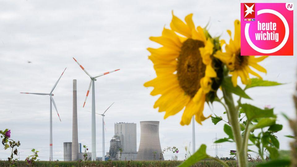 """Klimaschutz: """"Nicht zu agieren, wird sehr viel teurer werden"""""""
