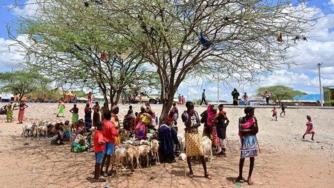 Viehhirten aus dem Volk der Samburu in der Provinz Marsabit im Norden von Kenia. Die Region erlebt eine dramatische Dürre, mehrere hunderttausend Menschen sind von einer Hungersnot bedroht.