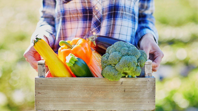 Eine Frau trägt eine Kiste mit Gemüse vor sich her