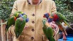 Zwei Hände voller Vögel: Ein Bild, das sicher in Erinnerung bleiben wird.
