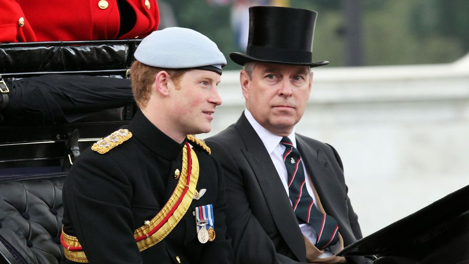 Prinz Harry und Prinz Andrew