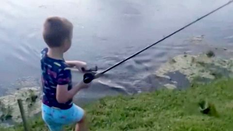 Alligator klaut Angler den Fisch