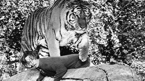 Tippi Hedren mit Tiger