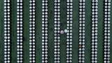 Zwei Besucher spazierenzwischen Sojasaucenbehältern in einer Gurkenfabrik.