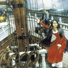 Bei der Fahrt um Cap Horn wurde das Schiff weit abgetrieben.