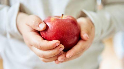 Hände von einem Kind, die Apfel halten