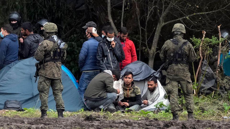 Migranten Grenze Polen